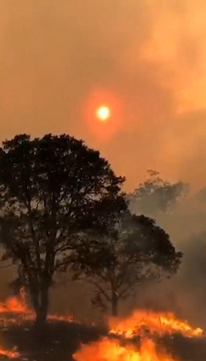 В Калифорнии лесные пожары приобретают катастрофические масштабы