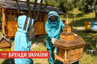 """""""Бренды Украины"""": как отличить фальшивый мед от настоящего"""