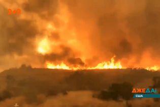 Масштабные лесные пожары в Калифорнии: есть первые жертвы