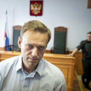 """Один из разработчиков """"Новичка"""" извинился перед Навальным"""