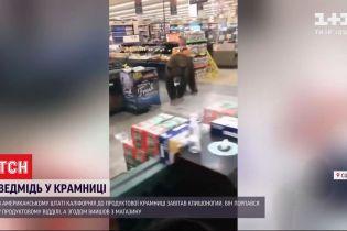 В Калифорнии в магазин пришел медведь