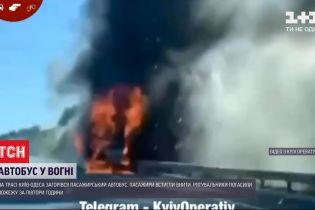 """Пожежа на дорозі: на трасі """"Київ-Одеса"""" загорівся пасажирський автобус, минулося без жертв"""