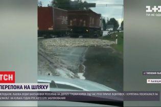 У Львівській області дорогу на кілька годин заблокували тушки курей