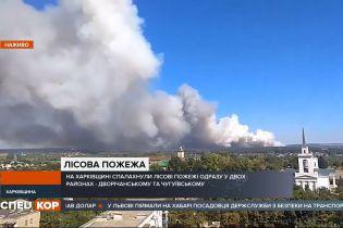 У Харкові спалахнули пожежі одразу у двох районах – горить близько 100 гектарів лісу