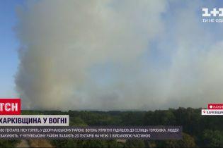 Харьковская область в огне: есть ли опасность для людей и их имущества