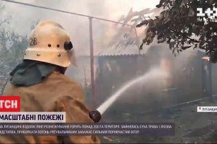 Через займання сухої трави у Луганській області горить понад 200 гектарів території
