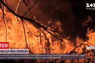 Пожежі у Луганській області: одна людина загинула, ще двоє - шпиталізовані з опіками