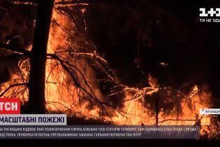 Во время пожаров в Луганской области погиб один человек