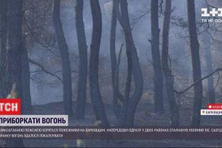 Пожары в Харьковской области удалось локализовать