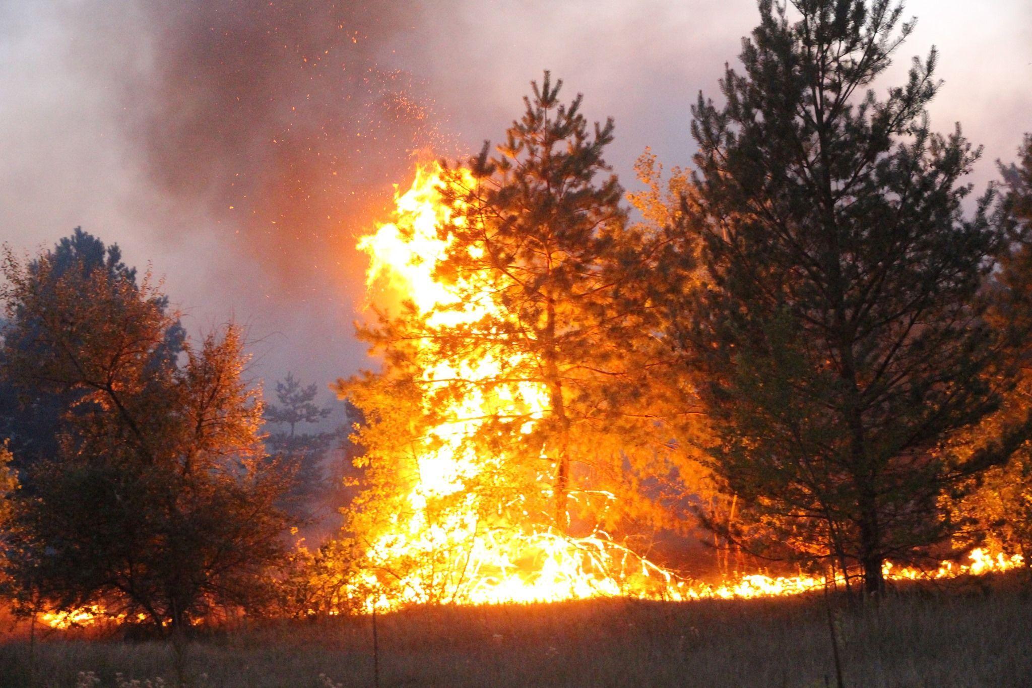 Пожежа в Луганській області