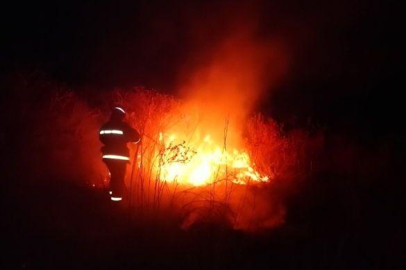 пожежі на харківщині_4