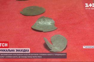Сребреники, найденные в Житомирской области, имеют неизвестные историкам знаки