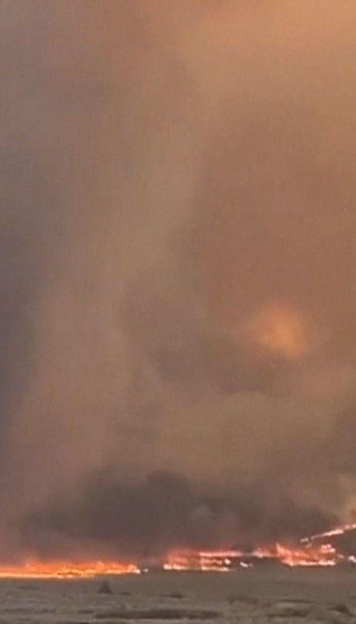Огонь в Калифорнии уничтожил почти 6 тысяч гектаров леса