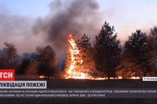 В Луганской области удалось локализовать пожар
