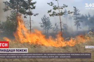 В Луганской области бушует крупный пожар на линии фронта, один военный погиб
