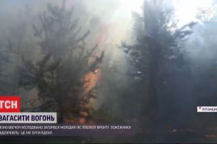 У Луганській області виникла нова масштабна лісова пожежа
