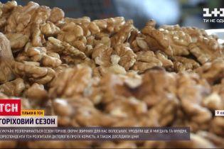 В Украине начинается сезон орехов