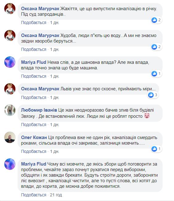 Коментарі обурених жителів Лавочного, що в Карпатах