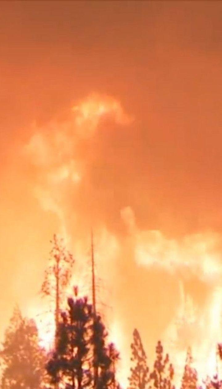 Лісові пожежі у Каліфорнії: полум'я охопило 14 тисяч гектарів менше як за добу