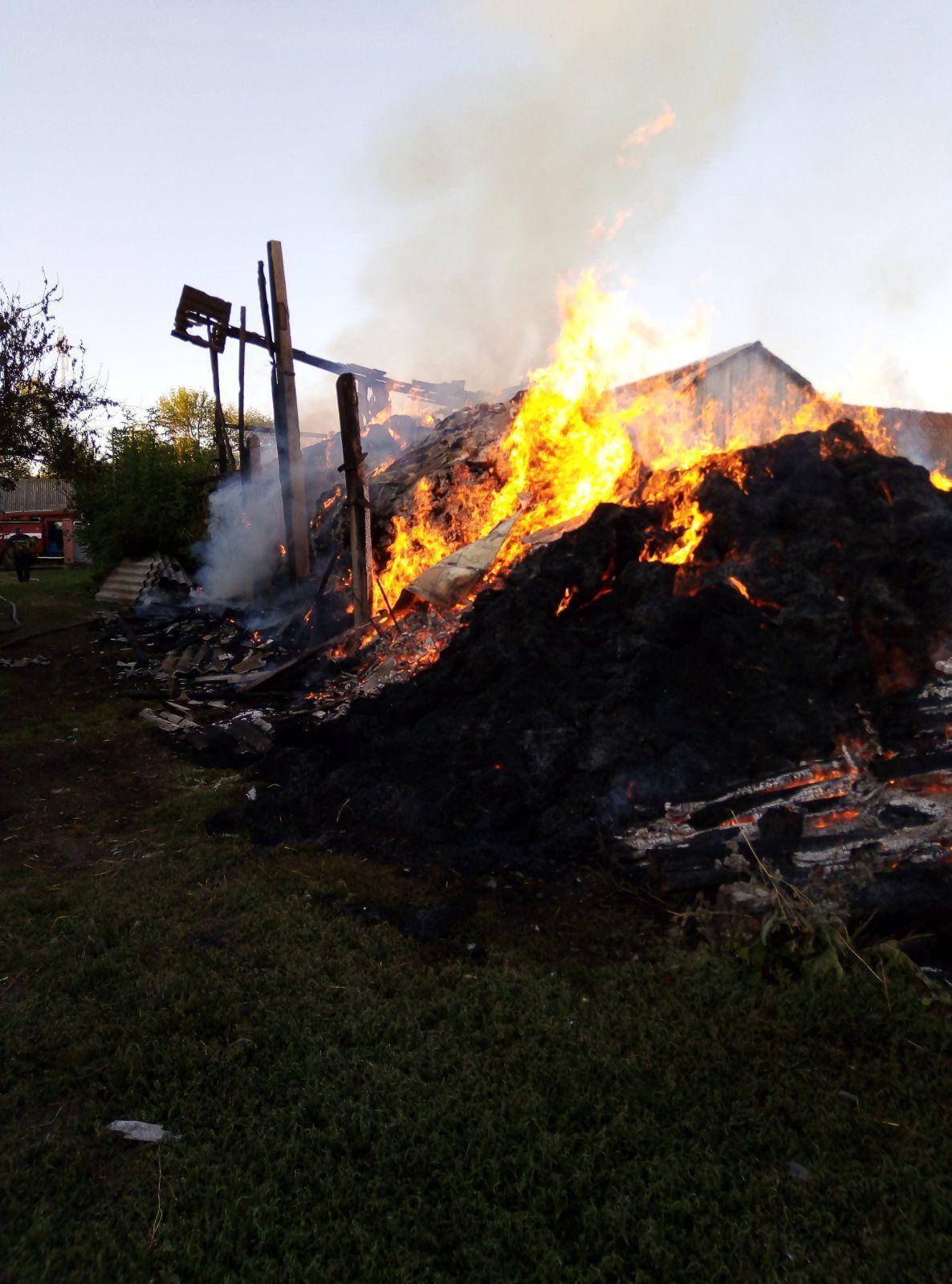 пожежа в Житомирській області
