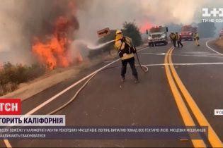 Площа пожеж у Каліфорнії побила історичні показники