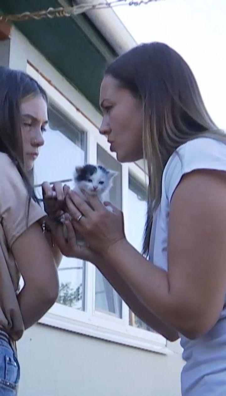 Директорка школи написала заяву про злочин на учнів, які рятували кошеня