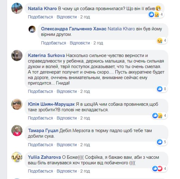 Вбивстов собаки у Львові