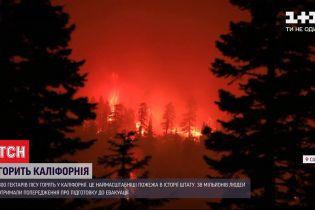 Крупнейший за всю историю пожар: в Калифорнии горит более 800 гектаров леса