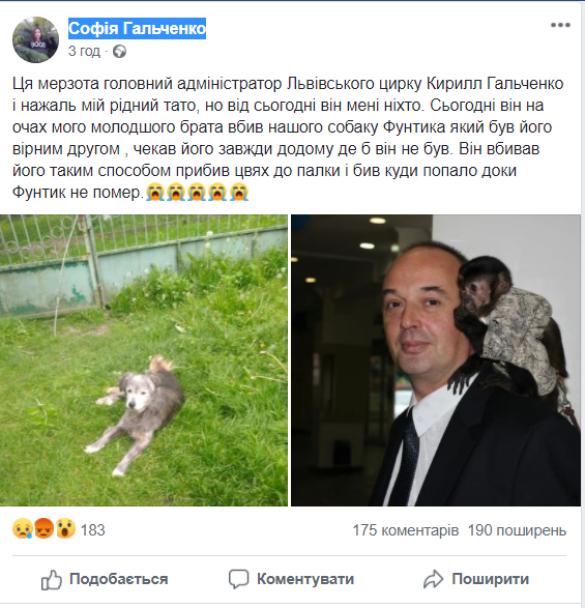 допис про нібито вбиту собаку