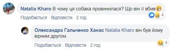 нібито вбитий собака у Львові