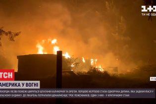 Під час лісових пожеж у Каліфорнії загинула однорічна дитина
