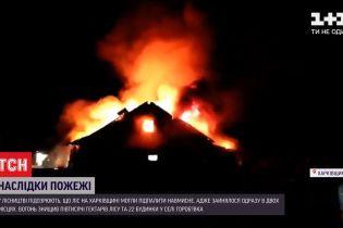 Знехтували пожежною безпекою чи умисно пошкодили майно: хто підпалив хвойний ліс
