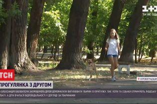 В приюте для животных детям дают попробовать ухаживать за четвероногими