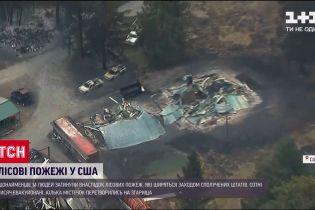 Внаслідок лісових пожеж у Каліфорнії кілька містечок перетворилися на згарища