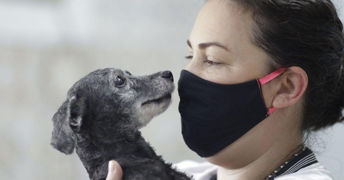 Вилікувалися більше, ніж заразилися: як поширюється коронавірус у Львівській області