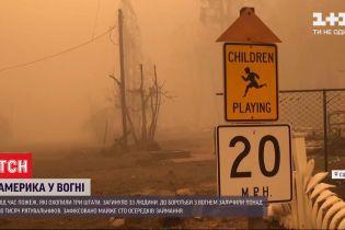 Соединенные Штаты горят: десятки тысяч эвакуированных, более 30 погибших
