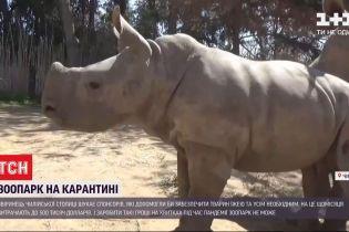 Зоопарк чилийской столицы нуждается в помощи на содержание зверей