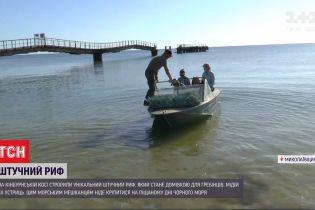 Незвичний екопроєкт: на Кінбурнській косі створили штучний риф
