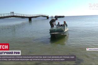 У Миколаївській області науковці створили унікальний екопроєкт