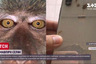 У Малазії мавпа влаштувала фотосесію на вкрадений телефон