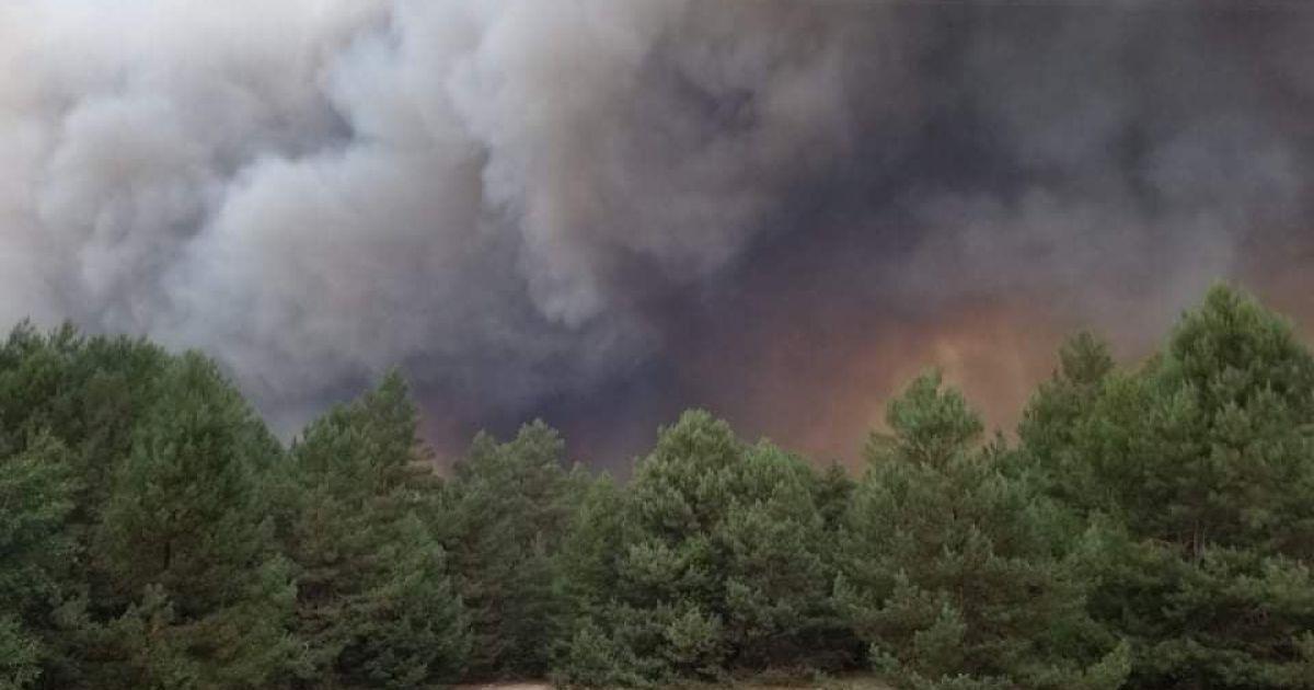 В Киевской области вспыхнул лес на военном полигоне