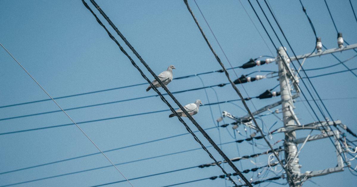 """В """"Укрэнерго"""" заявили, что во время похолодания отключений электричества не планируют"""