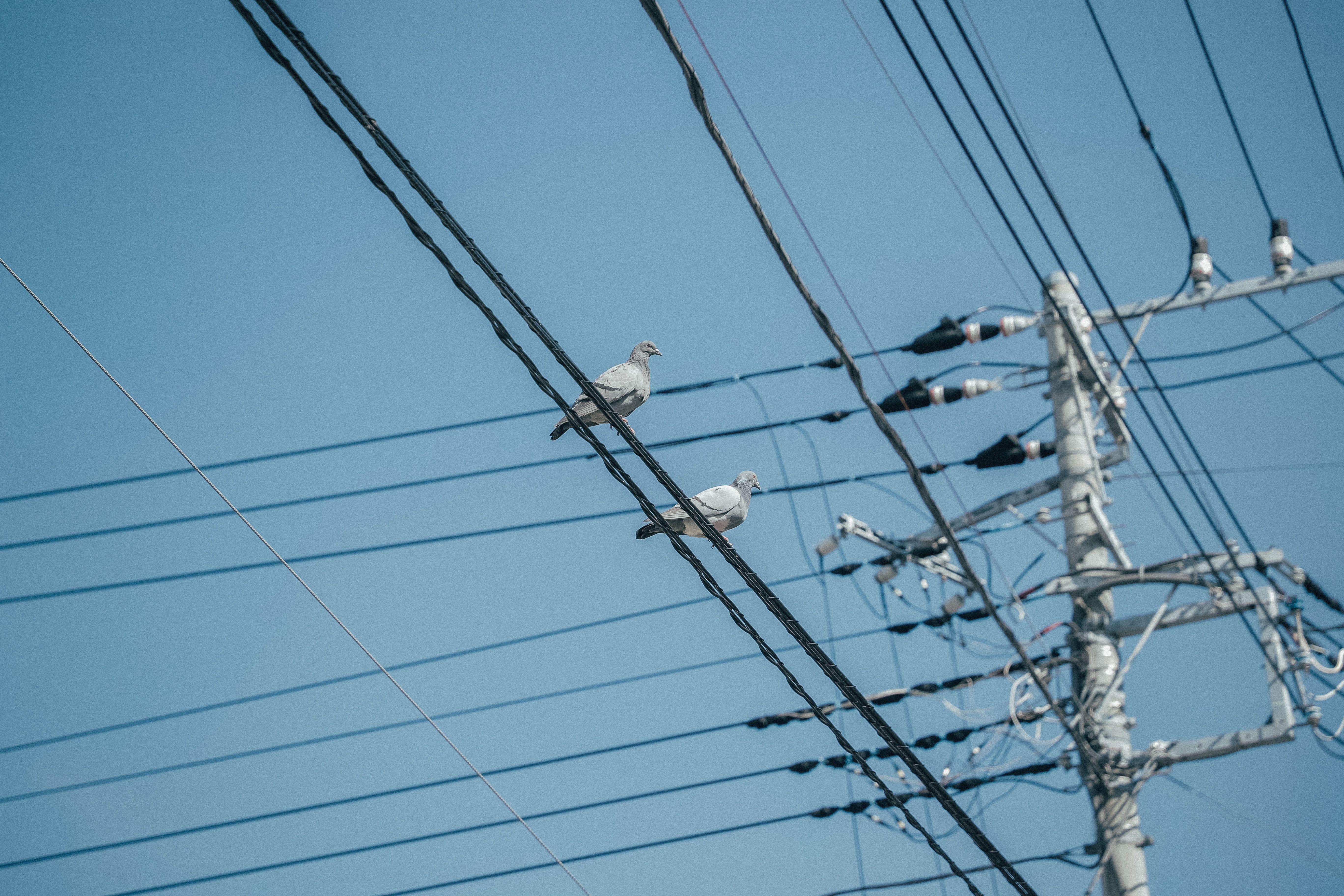 Електроенергія, відновлення електропостачання