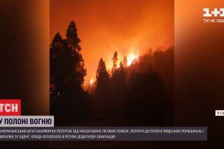 Пожары в Калифорнии: местные власти объявили дополнительную эвакуацию местного населения