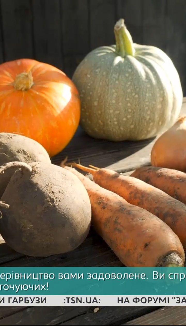 Как хранить овощи и фрукты – Сніданок на дачі