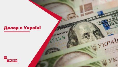 Доллар в Украине: когда падение гривны остановится и достигнет ли отметки 30