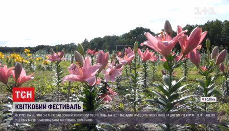 Лилии и хризантемы: на Волыни фермер организовал осенний цветочный фестиваль