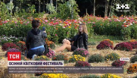 Цветочный фестиваль: волынский фермер посадил тысячи цветов на одном участке