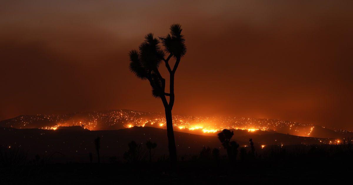 Уже более 30 человек погибли в масштабных пожарах в Калифорнии