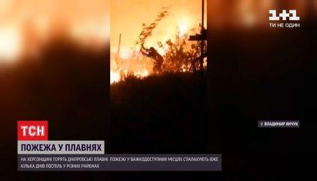 В Херсонской области горят Днепровские плавни